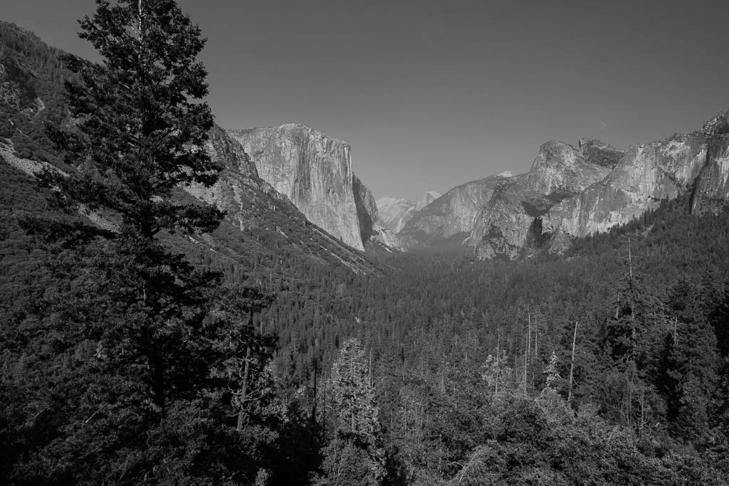 Yosemite National Park, California, 2013, © Luc Litzler